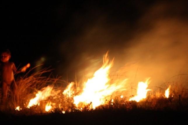 guri fogo